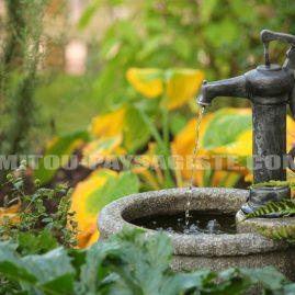 Mitou paysagiste créateur de jardin remarquable