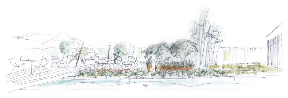 Dessin pour la réalisation d'un jardin vue terrasse