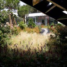 Création de jardins Le Havre Normandie