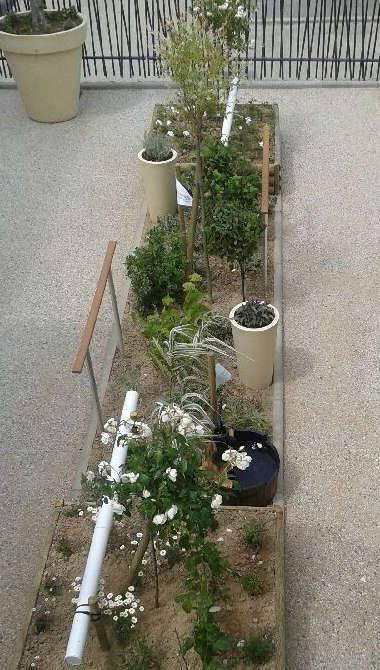 Jardin thérapeutique Blanc 380x670